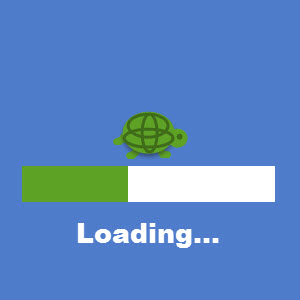 Tune-Up Software Slow Loading Turtle